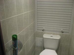 v-tualete-domashnie-foto